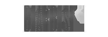 Store logo GearBest